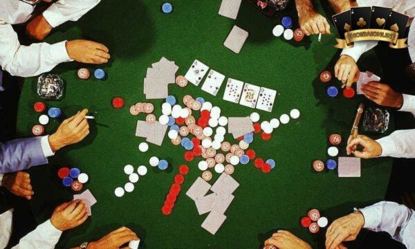Trang web đào tạo Poker